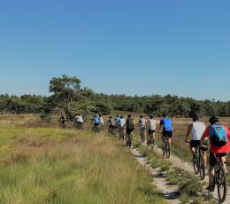 Mountainbiken op de Veluwe 4